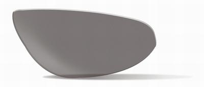 Smoke Grey glazen voor de JAKE - LAATSTE